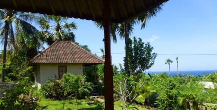 Frangipani Inn & Restaurant - Bungalow 1