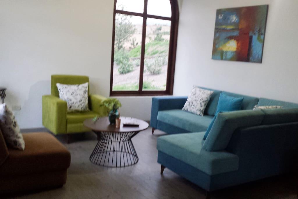 Sala principal con TV, confortable, sofá cama y sofá en L, chimenea , mueble con decoración y juegos de sala, terrarios , wi-fi. Decoración vanguardista moderna...espacios plenos de luz.