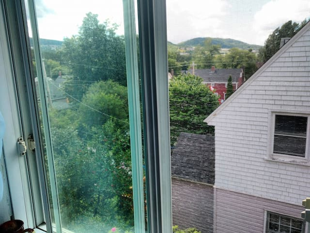 One Room, Town Site - Corner Brook - House
