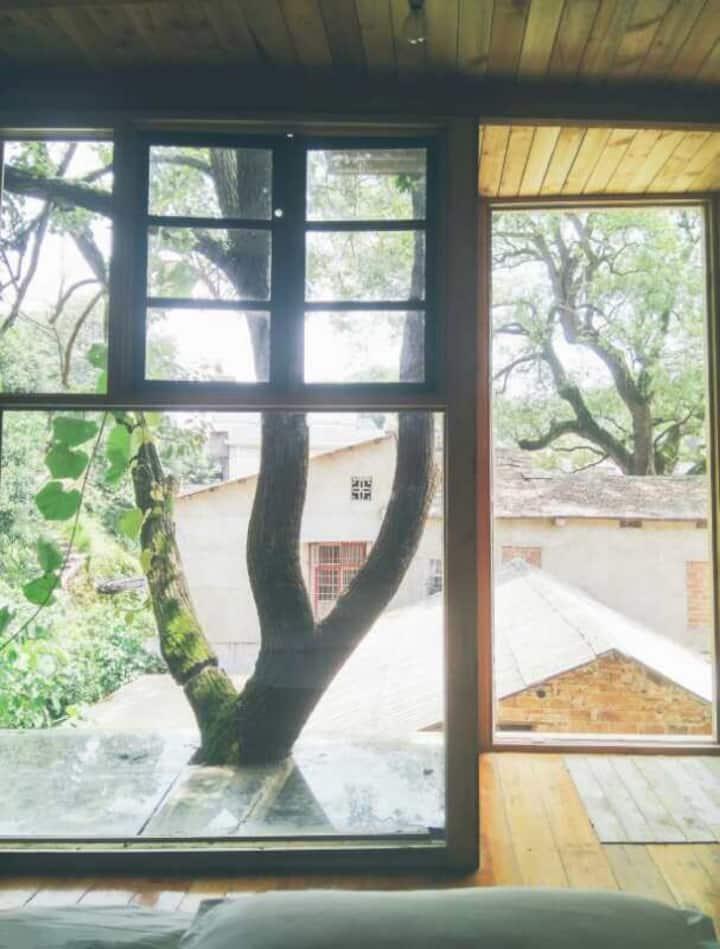 树屋 落地窗 岳麓山景