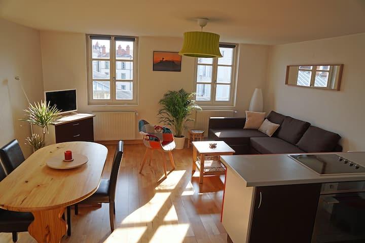 Appartement de charme au coeur du Puy-en-Velay !