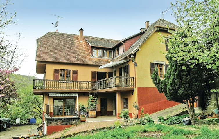 Holiday apartment with 2 bedrooms on 105 m² in Breitenbach