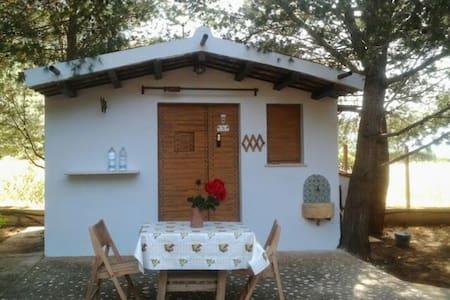 San Vito lo Capo,Castelluzzo. La casetta di Ricky! - Castelluzzo