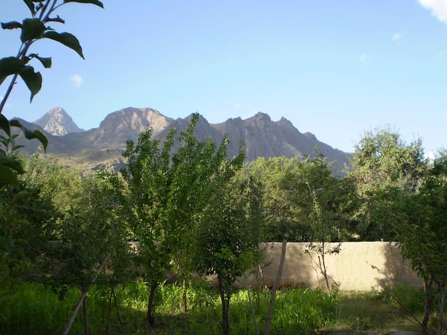 Natural view, Fruit garden & 24/7 spring water,