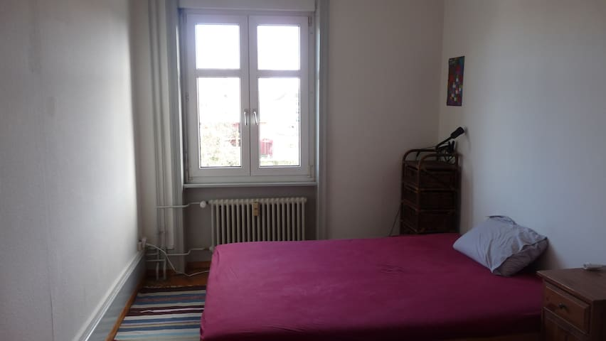 Bright and Cozy room with a view in Basel-Stadt