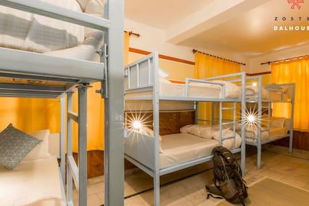 Dorm Beds in 8 Bed Mixed Dorm