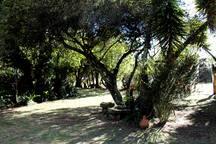Ideal para disfrutar la naturaleza y relajarse.