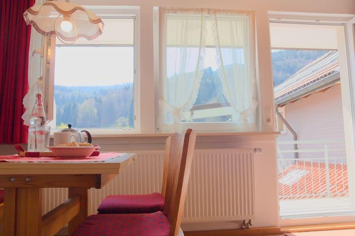 Apartment Bergfreude Todtnau - Gemütliche Ferienwohnung im Schwarzwaldstil mit eigenem Balkon und Berglick