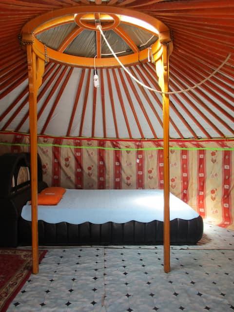 Gaya's guesthouse Ger 2