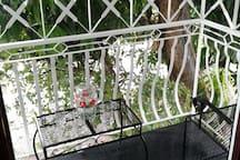 Balcony  in the tree