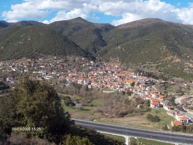 Πανοραμική άποψη του χωριού.