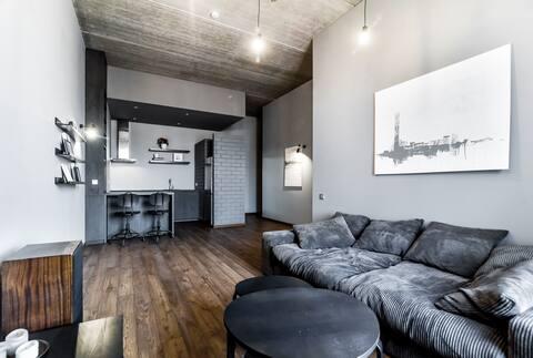 Luxury cozy apartment near Kaunas city center