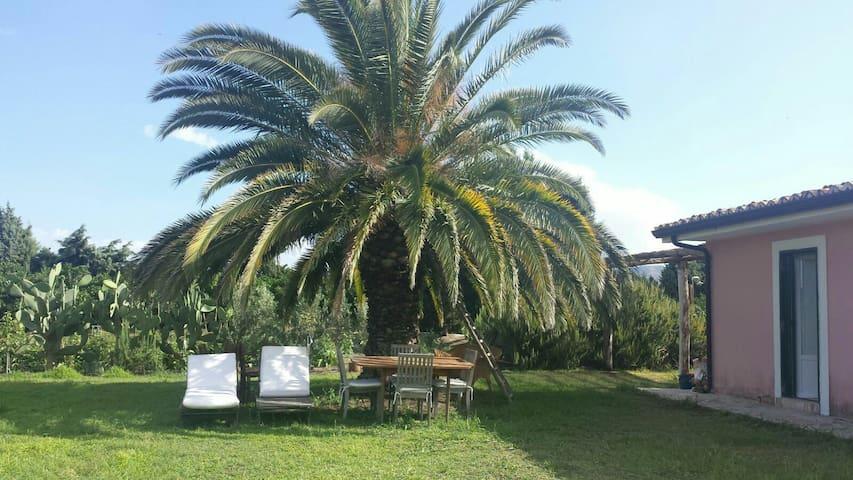 Deliziosa casetta  sul mare - Sant'Andrea Apostolo dello Ionio - Cabin