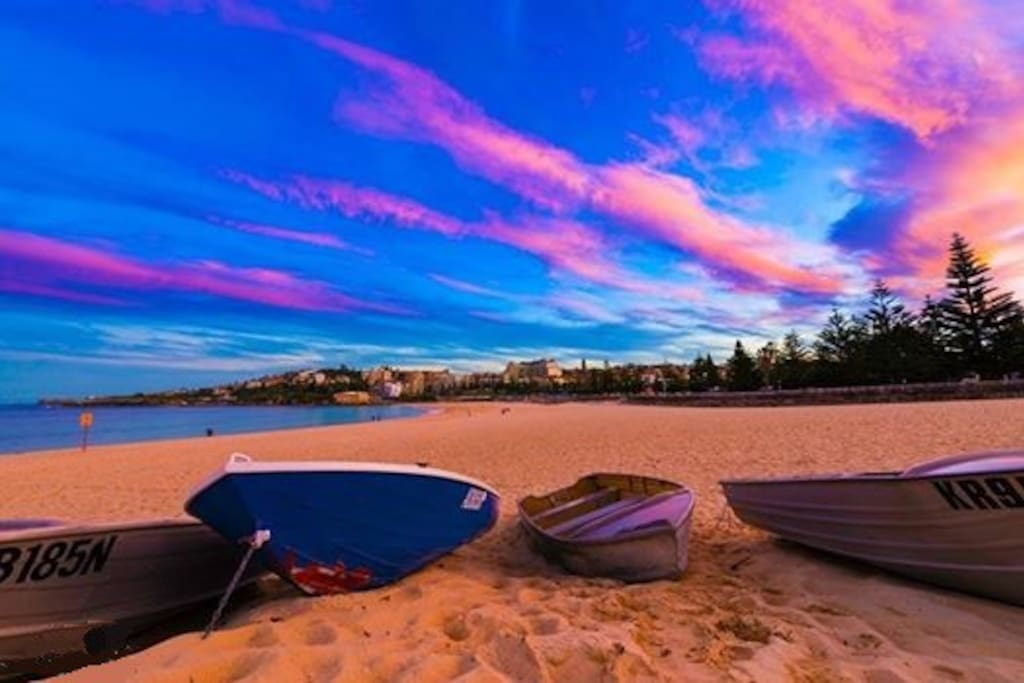 Coogee Beach boats