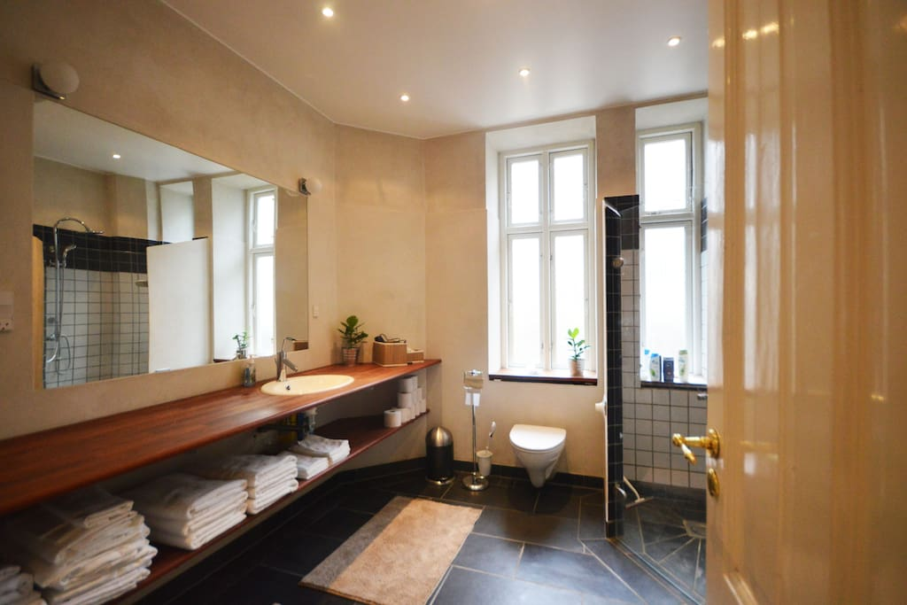 This bathroom has a really high standard compared to other copenhagen apartments.