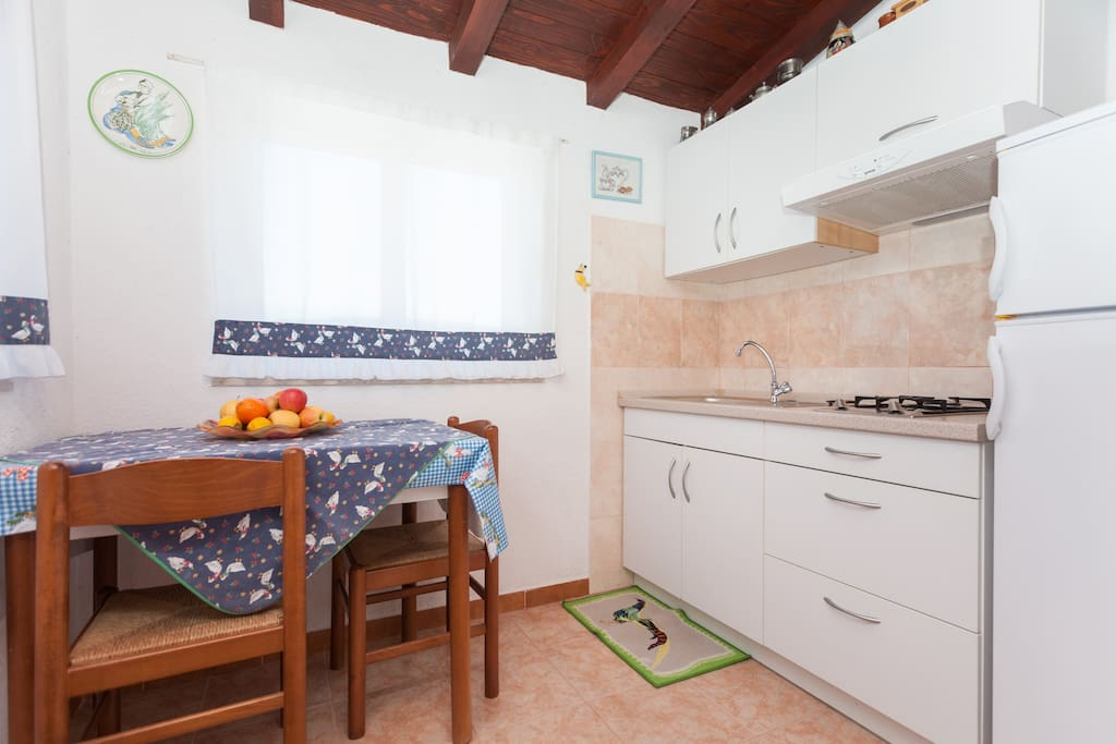 small kitchen with direct access to the garden terrace