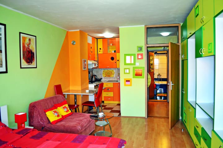 Entire app. Pozarevac center - Požarevac - Apartment