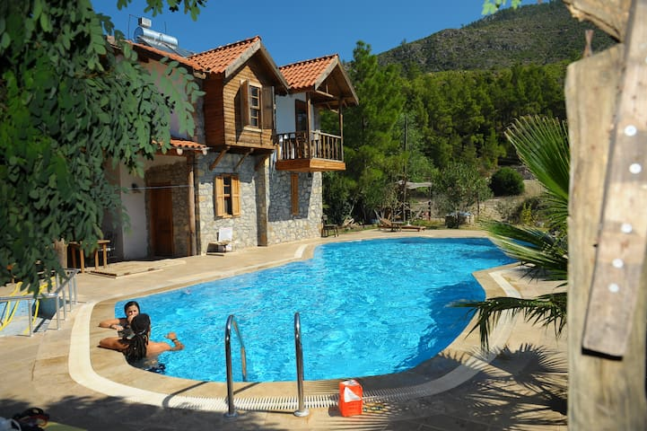 Olympos Köyevi Countryhouse - Olympos - Bed & Breakfast