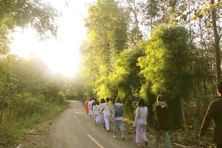 Meditation/ Healing/ Nature