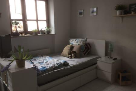 Stille Oase mitten in der Stadt - Regensburg - Wohnung