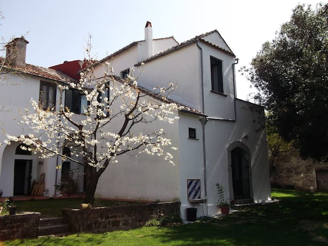Villa Mimosa- Un angolo di paradiso - Calvanico - วิลล่า