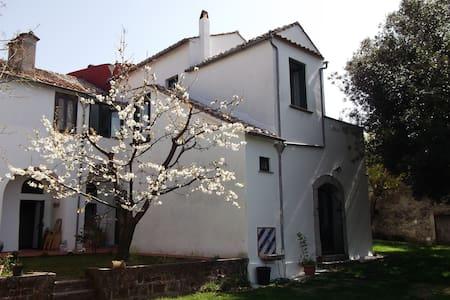 Villa Mimosa- Un angolo di paradiso