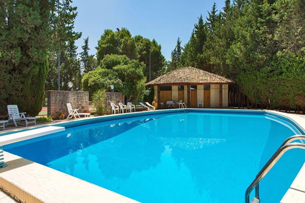 279 villa avec piscine lecce villas louer lequile - Piscine a lecce ...