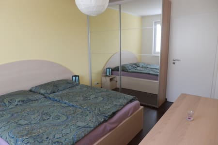 Cosy room in a spatious & new flat - 布爾諾 - 公寓