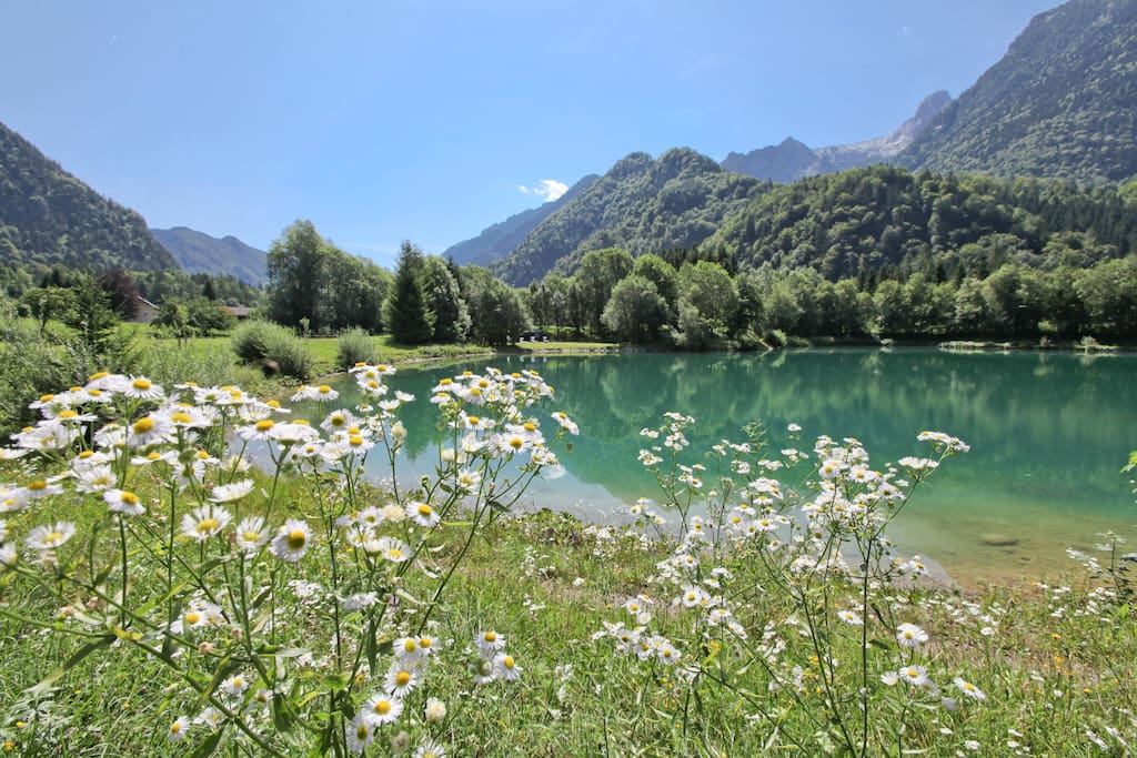 Renovated old farmhouse with ponds near salzburg villas for Private fishing ponds near me