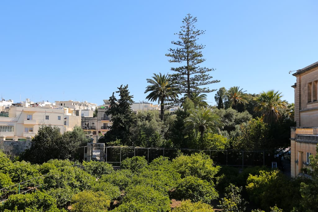 A great view from the roof of one of the largest and oldest gardens in Birkirkara.