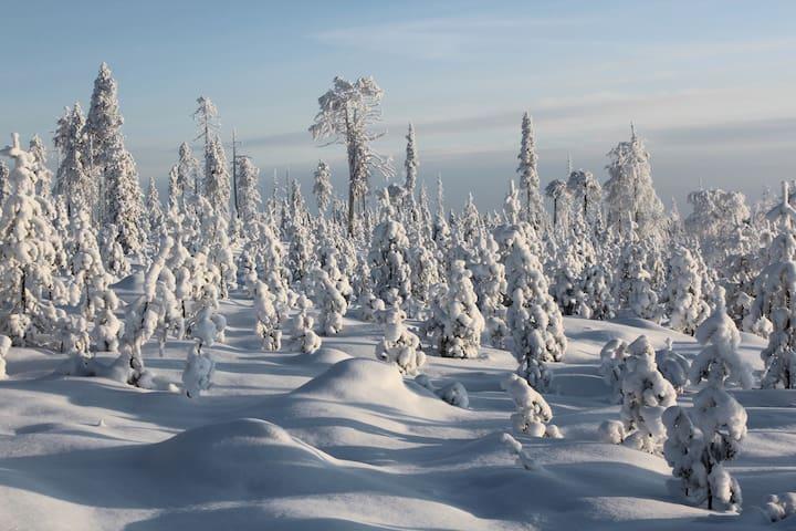 Kirmoitalo : Room-2 in Salla, the arctic Lapland