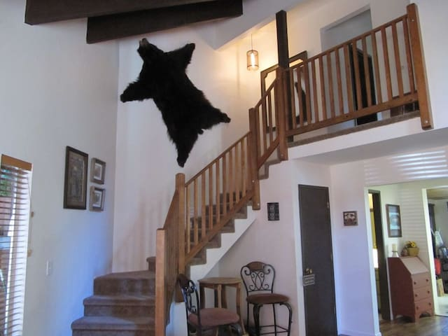 Our bear rug, a nod to Tahoe wildlife. We purchased this vintage piece at a church rummage sale and have affectionately named him Cecil.