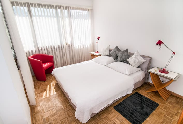 Beautiful 2room apartment in Lugano - Massagno - Apartmen