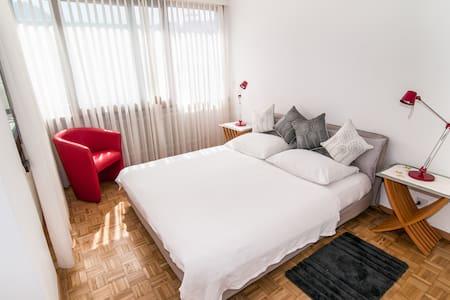 Beautiful 2room apartment in Lugano - Massagno
