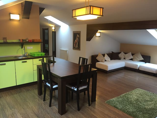 Welcoming&friendly Apartment in Sinaia - Sinaia - Huoneisto