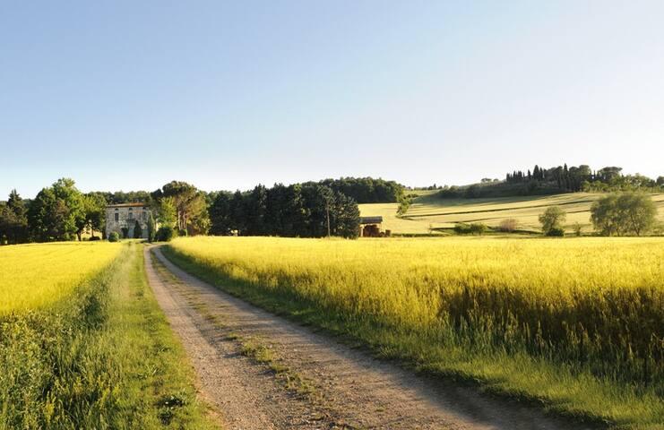 Casa Rurale - Città della Pieve - House