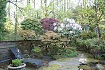 Entryway garden!