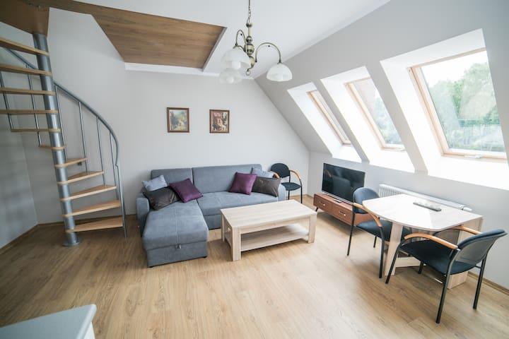 Apartament Sudety 2 - Poziomowy / ms-apart