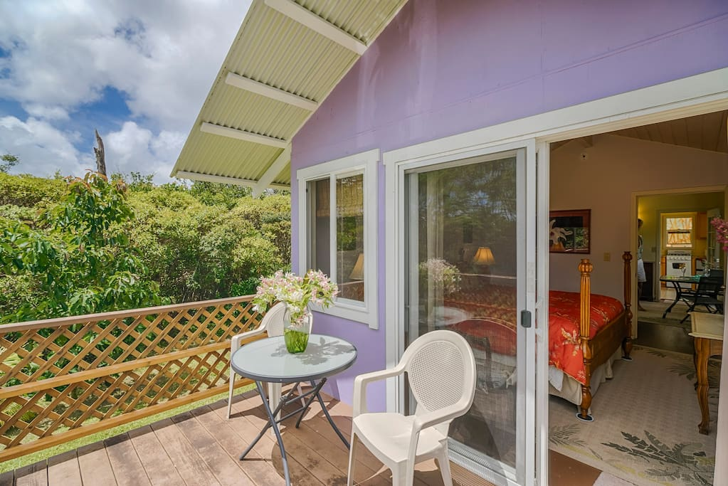 Lanai with ocean view attached to private bedroom