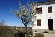 Our peer tree