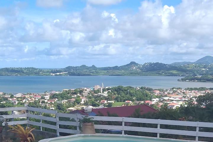 Petit Palmier logement sympa au centre de l'île