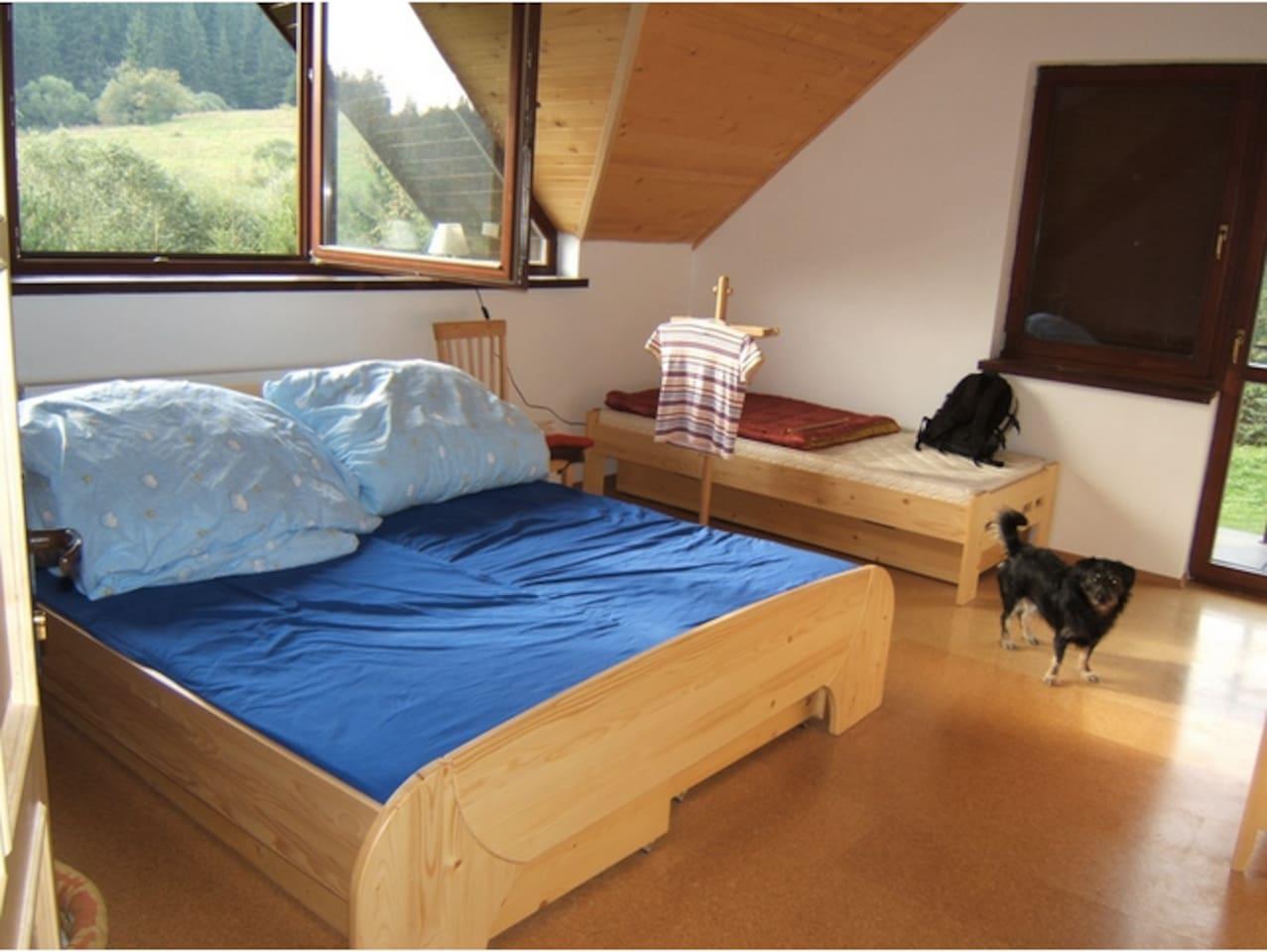 Big Cabin in Low Tatra Mountains