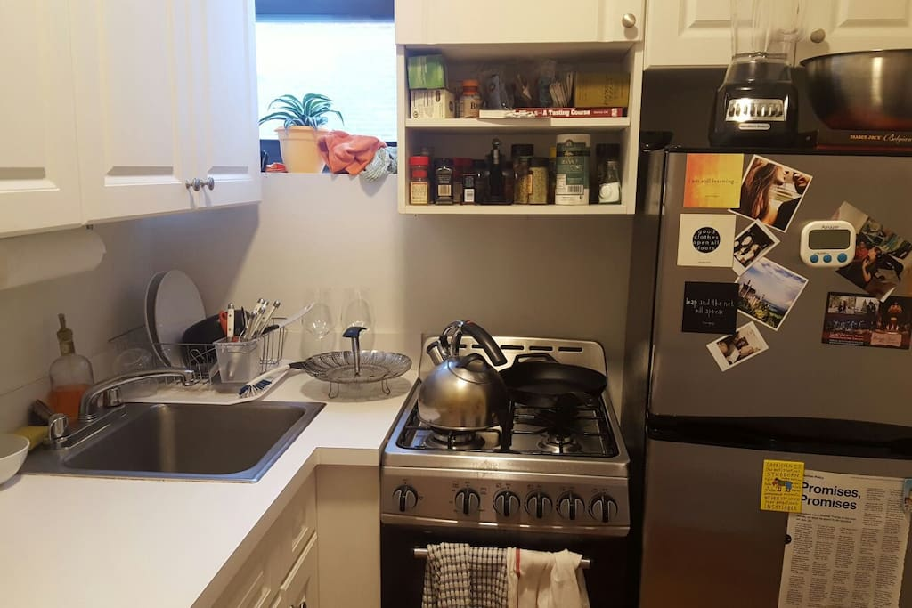 This is the kitchen which you will have access to.