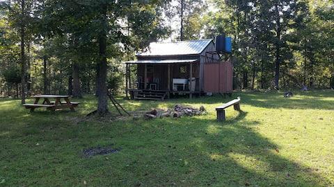 Rustic Off-Grid Cabin in Woods