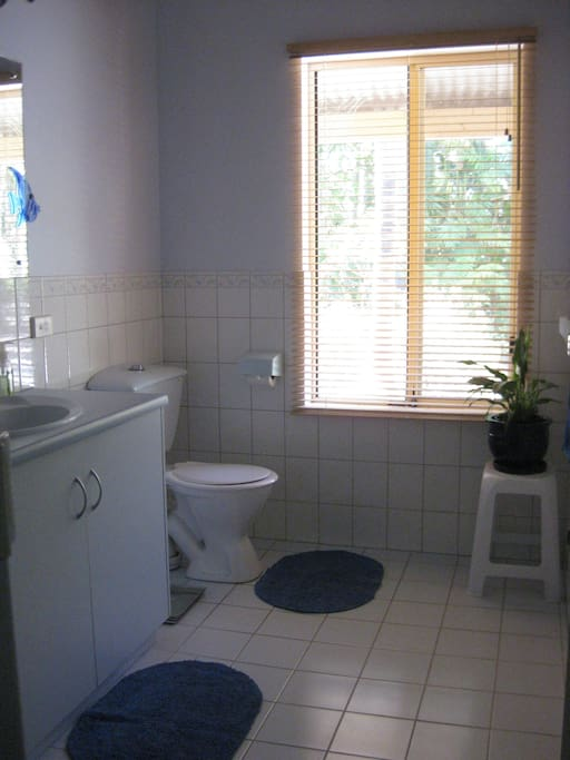 Large, clean bathroom with shower, wash basin and toilet.