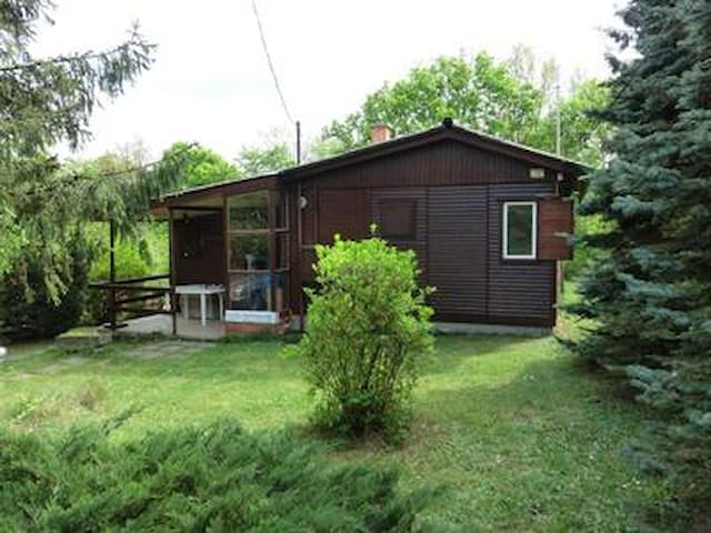 Holiday home in the Danube Bend close to Budapest near thermal bath for families Pet friendly