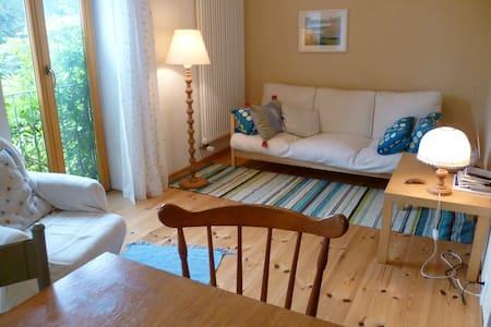 Ferienwohnung direkt am Wasser - Borkow - Apartment - 1