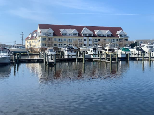Marina life on beautiful Spring Lake!