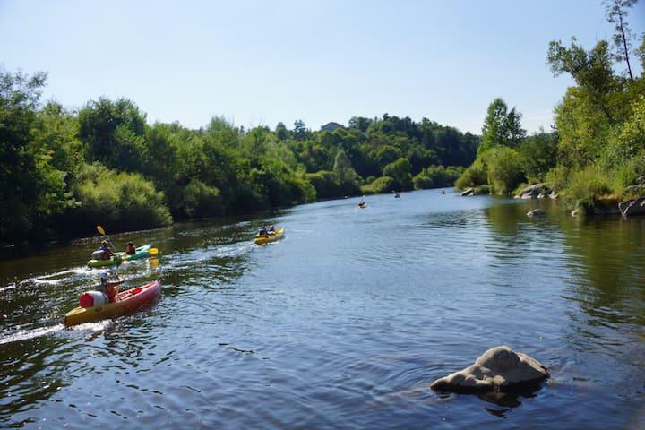 Canoé sur la Loire ( Bas en Basset) à environ 25 min du meublé