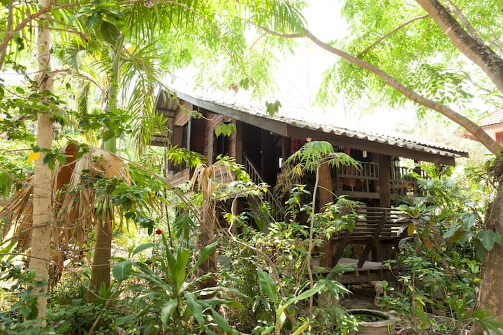 Guest House in the Trees - Chiang Mai - Huis